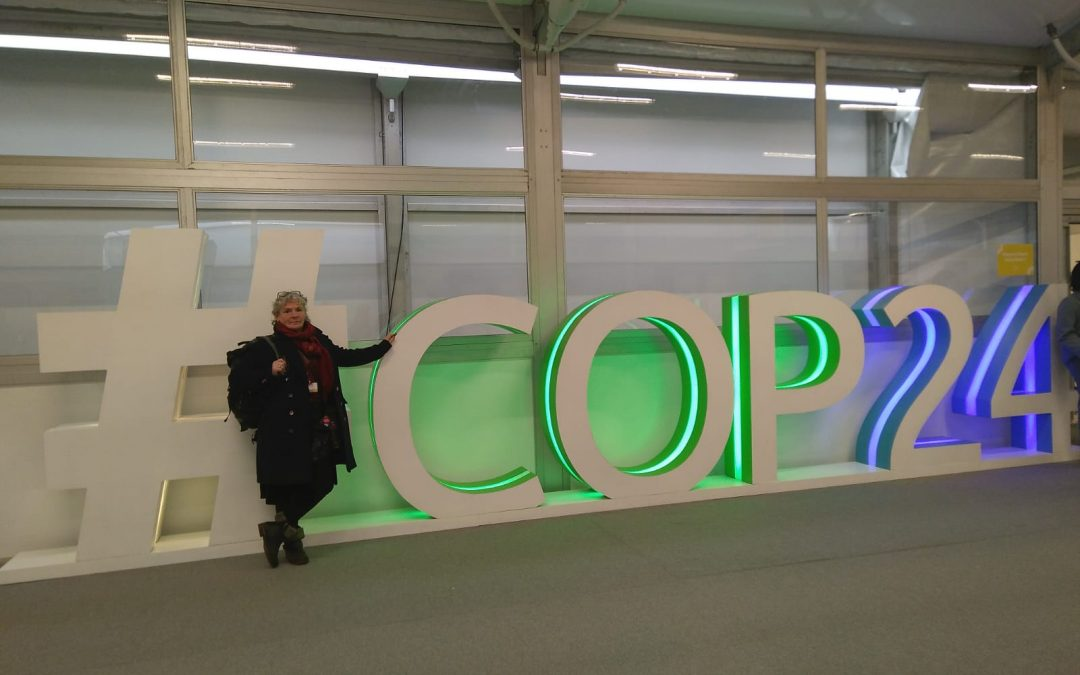 Is This It? Looking towards COP26
