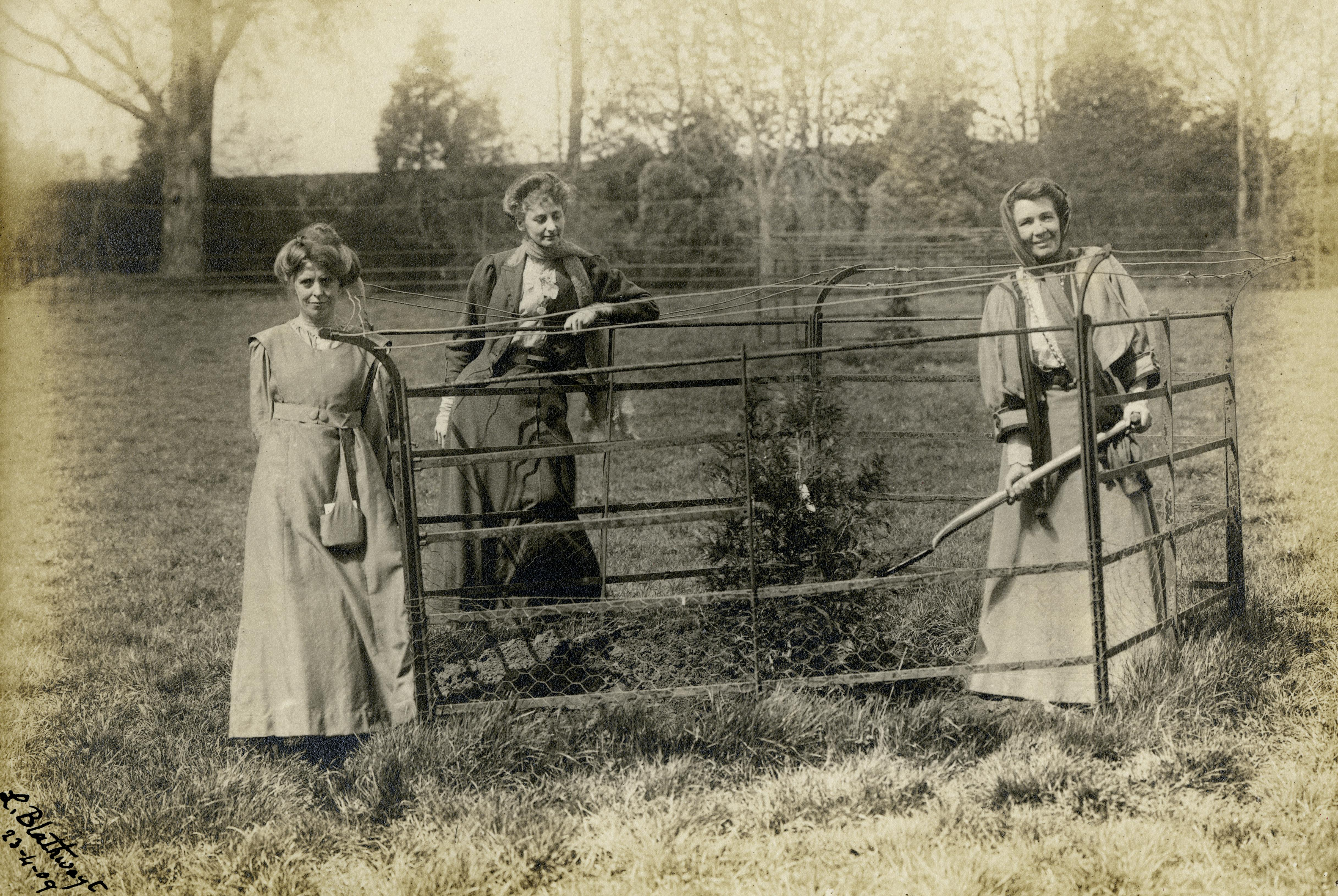 Emmeline Pethick Lawrence planting her tree with A. Kenney and Lady Lytton