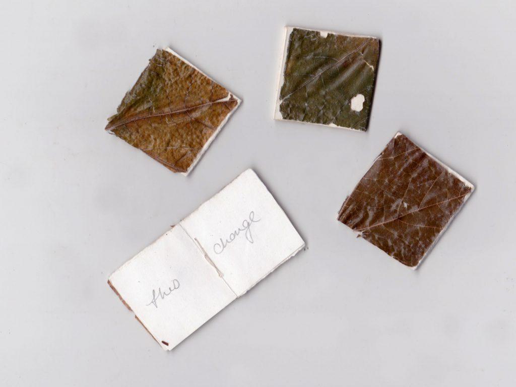 Mini Leaf Books