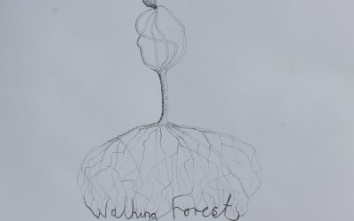 Walking Forest Inception