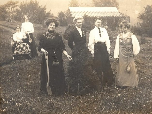 Rose Lamartine Yates plants her pine sapling
